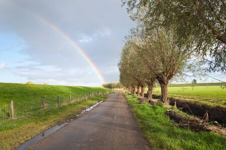 pollard willows: Country road with puddles of rain. In the overcast sky is a true rainbow visible. Stock Photo