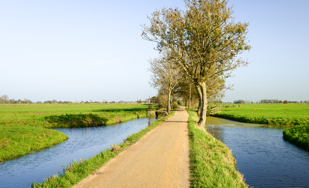polder: Narrow bike path between the water and the meadows in a polder area in the Netherlands. Its a sunny day in the fall season.