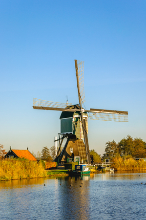 polder: Picturesque and colorful polder landscape in the Netherlands with an historic windmill and a small moored boat on a sunny day in the fall season. The leaves of the reed plants are yellowed already. Stock Photo