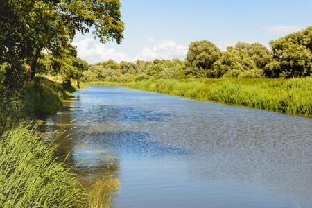reflects: Wide creek in Dutch National Park De Biesbosch. It is a sunny summer day and the blue sky reflects in the water surface. Stock Photo