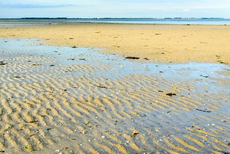 sandbank: Sandbank of a Dutch estuary at low tide on an early morning in summertime.