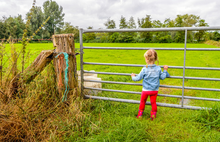 dirty blond: Blond toddler girl with pigtails and red boots looking through the iron gate to the pasture. Her pants are dirty from playing in the wet and muddy environment.