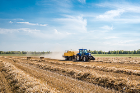 coupled: With the high-pressure baler coupled to a tractor the wheat straw is mechanically picked up and squeezed in square bales. Stock Photo