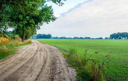 suelo arenoso: Curved sandy path con huellas de neumáticos en un paisaje rural temprano en la mañana de un día al comienzo de la temporada de otoño.