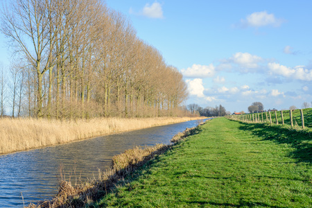 Row of tall and trees along a narrow canal next to an embankment dike separated by a fence from wooden poles and barbed wite on a sunny day in the winter season.