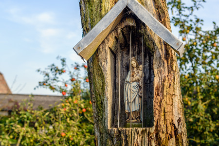 jezus: Holy Mary figurine in a niche carved out in an old and weathered tree at the edge of a farm yard in the Netherlands.