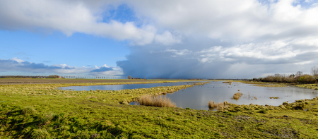 Threatening clouds above a swampy natural area in the Netherlands. It is at the end of the winter season. Stock Photo