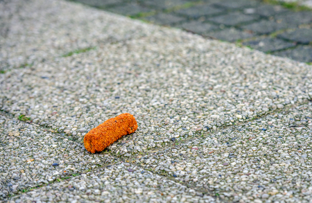 Detailed view of a carelessly discarded croquette on the pavement of a Dutch street.