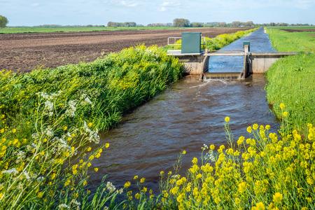 Kleine stuw in een stroom van water niveauregeling in een Nederlandse polder. Het is lente met jong en vers gras en gele bloeiende koolzaad.