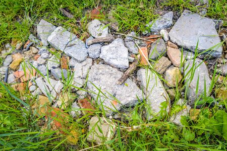 agricultural area: Closeup of colorful pieces of stone among the grass and other wild plants as a part of an ancient path in an agricultural area in the Netherlands.