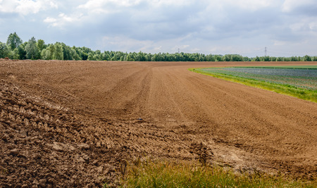 recently: Recently built curved dike in the Netherlands on a cloudy day in the spring season. In the background is a field with the cultivation of cabbages. Stock Photo