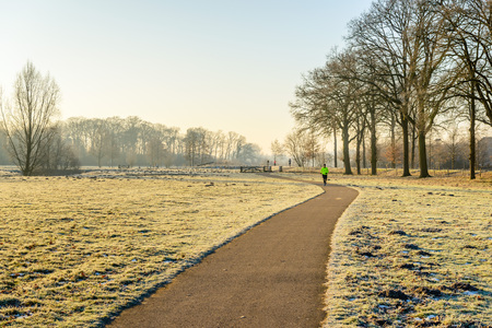 Man in striking sportswear running hard on an asphalt path in a Dutch winter landscape with tall leafless trees. Its cold outside now.