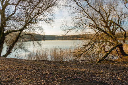 Mirror smooth lake framed by two bare trees in the late afternoon of a sunny day in the Dutch winter season. Stock Photo