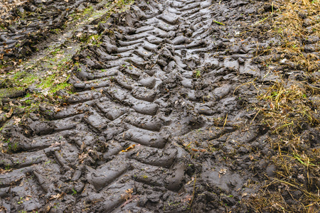Closeup of tractor tire tracks in muddy soil.