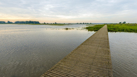 Narrow wooden footbridge made of planks over the water of a Dutch nature reserve. It is early in the morning of a day in the summer season.