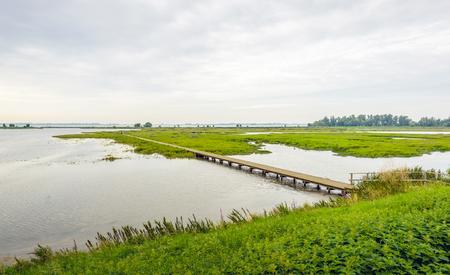 Niederländischen Naturschutzgebiet in der Sommersaison mit einem langen Steg über das Wasser. Viele Esseln blühen am Ufer.