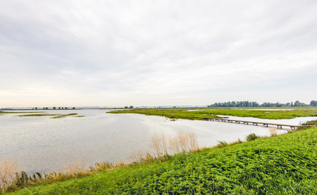 Dutch nature reserve in the summer season with a long footbridge over the water. Many nettles bloom on the banks. Lizenzfreie Bilder