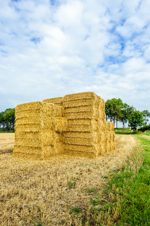 Stacked straw bales in front of a large stubble field in the morning of a cloudy day in the Dutch summer season.