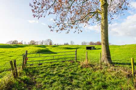 Corrugated landscape at the edge of the Dutch fortress town Woudrichem in the province of North Brabant on a sunny day in the autumn season. Stock Photo