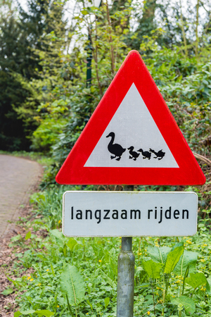 Dutch traffic sign Beware Crossing Ducks and underneath in the Dutch language the text Drive Slowly.