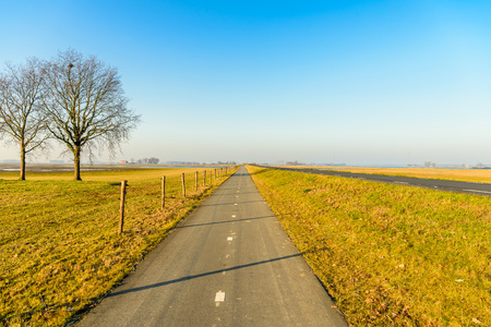 Long straight bike path next to a fence with wooden poles and barbed wire in a Dutch polder landscape. It is a sunny day in the end of the winter season. The grass is yellowed.