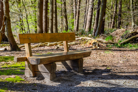 Solid oak wood bench made from railway sleepers at the edge of a coniferous forest in the Netherlands. It is a sunny day in the beginning of the spring season.