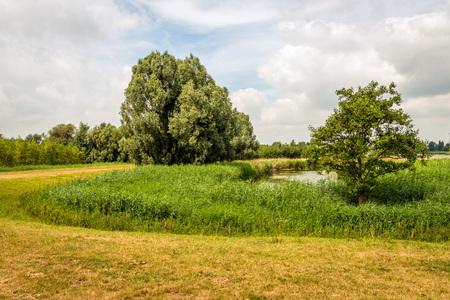 Nederlands landschap met een bochtige dijk rond een natuurlijke vijver op een bewolkte dag in het zomerseizoen. Stockfoto
