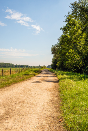 Winding dirt road between trees and grassland with a fence made of wooden poles with wire mesh. It is a sunny day in the Dutch summer season. Imagens