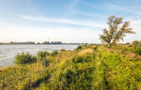Malerisches Bild der Banken des breiten holländischen Flusses Waal früh morgens am Anfang der Herbstsaison.