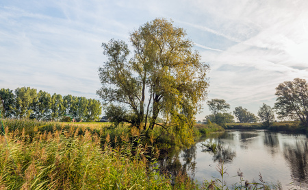 Atmospheric backlit image of a natural pond early in the morning on a windless day in the beginning of the fall season. Trees are refelcted in the mirror smooth water surface. Lizenzfreie Bilder