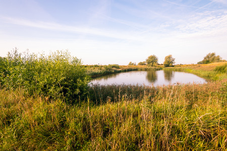 Natural pond early in the morning of a sunny day in the beginning of the fall season. Lizenzfreie Bilder