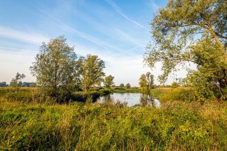 Bright colors in an uncultivated Dutch landscape at the bank of a wide river. Autumn has just begun and the colors of the leaves are already changing. Lizenzfreie Bilder