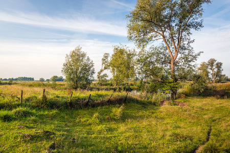 Old skewed fence in a colorful rural landscape next to a wide river in the Netherlands. The fall season has begun and the colors are chaning. Lizenzfreie Bilder