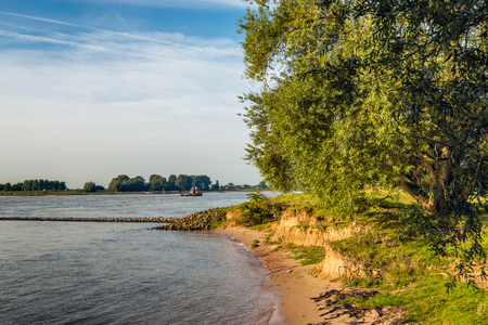 Bank and groyne of the wide Dutch river Waal early in the morning on a sunny day in the beginning of the fall season. In the background a small tugboat is sailing.
