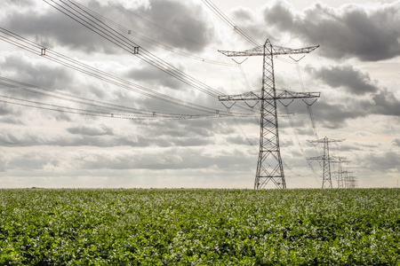 Seemingly endless row of tall power pylons and high voltage lines in a Dutch agricultural landscape on a cloudy day in the fall season.