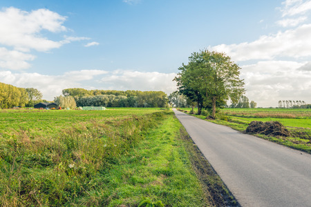 Country road through an agricultural landscape in autumn. In the background the building of the farm are visible. Lizenzfreie Bilder