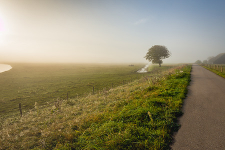 Country road early in the morning in the late summer season. The sun rises but the morning mist is still visible in the background. Lizenzfreie Bilder