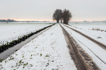 Tire tracks in the snow on a country road in the Netherlands. It is a cloudy day in the winter season.