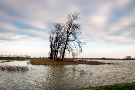 Dutch polder flooded by the high water level in the nearby river. It is a cloudy day in the beginning of the winter season. Stock Photo