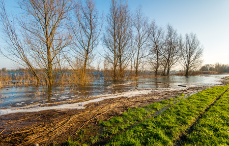 The floodplain is almost completely flooded due to the high water level in the Dutch rivers.