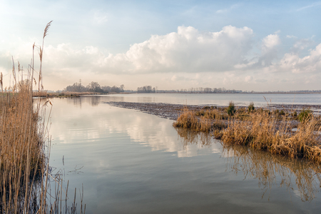 Wide view of a creek in Dutch National Park De Biesbosch. It's winter, the high water level is gradually declining and flooded areas become visible again.