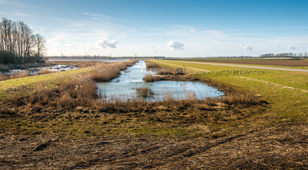 Natural area in a redesigned Dutch polder at the end of a sunny day in the beginning of the spring season.
