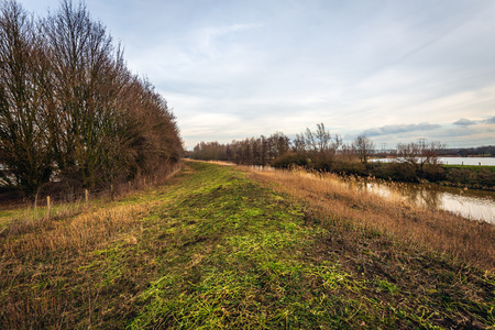 Colorful landscape with an embankment in a Dutch nature reserve near the city of Oosterhout, North Brabant, in the winter season.  In the background are high voltage lines and pylons.