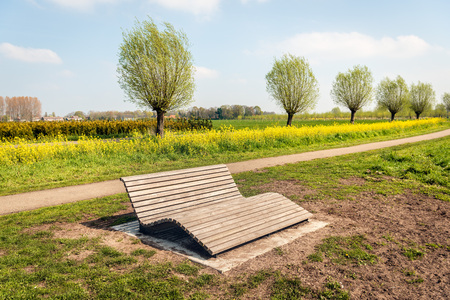 Comfortable wooden slat bench in a Dutch park near the village of Wagenberg, North Brabant. It is springtime and the wild rapeseed plants are in full bloom.