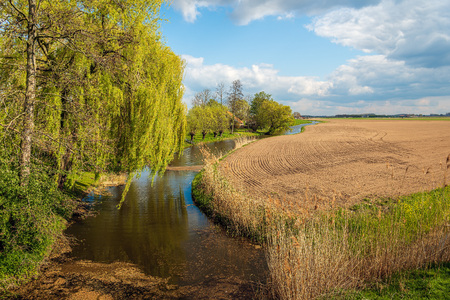 Picturesque Dutch rural landscape with a small stream. It is springtime and the large field has just been plowed and cultivated. In the foreground is a weeping willow tree.