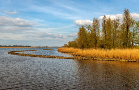 Curved dam in the Dutch river Amer near the village of Hooge Zwaluwe, Drimmelen, North Brabant. On the other side of the water is Dutch National Park Biesbosch in the background. It is springtime now. Stockfoto - 124903476
