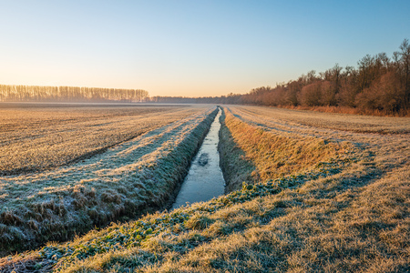 Dutch agricultural area with winter wheat sown in rows and a ditch in the morning sun on a winter day. The leaves and the grass blades along the ditch are covered with a thin layer of rime. Archivio Fotografico - 124903598