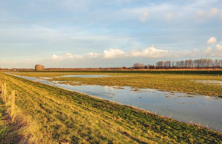 Flooded area in Dutch National Park Biesbosch near the village of Werkendam. The photo was taken just before sunset at the end of a sunny day in the winter season. Reklamní fotografie