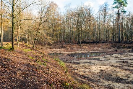 Bottom of an almost dried up lake in the Netherlands. After the prolonged drought last summer, the water level has fallen sharply en now the bottom is almost dry. The photo was taken in wintertime. Archivio Fotografico - 124903694