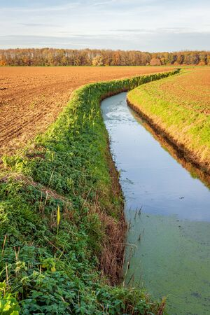 Dutch plowed fields intersected by a meandering ditch. Green duckweed floats on the water of the ditch. The photo was taken at the end of the fall season near the village of Hank, North Brabant.
